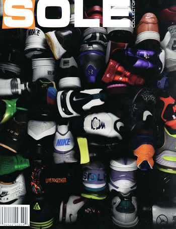 Solecollector34